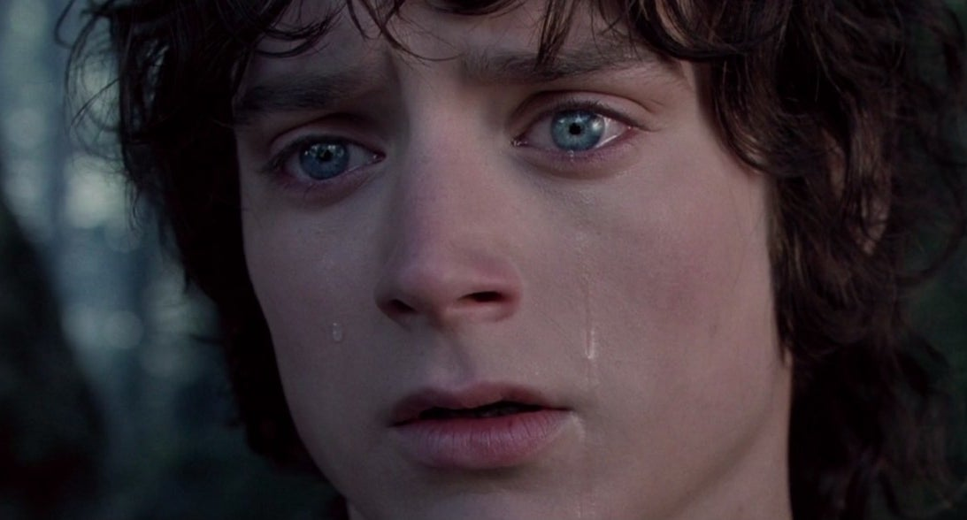 "elijah wood crying in ""lord of the rings: the fellowship of the ring"""