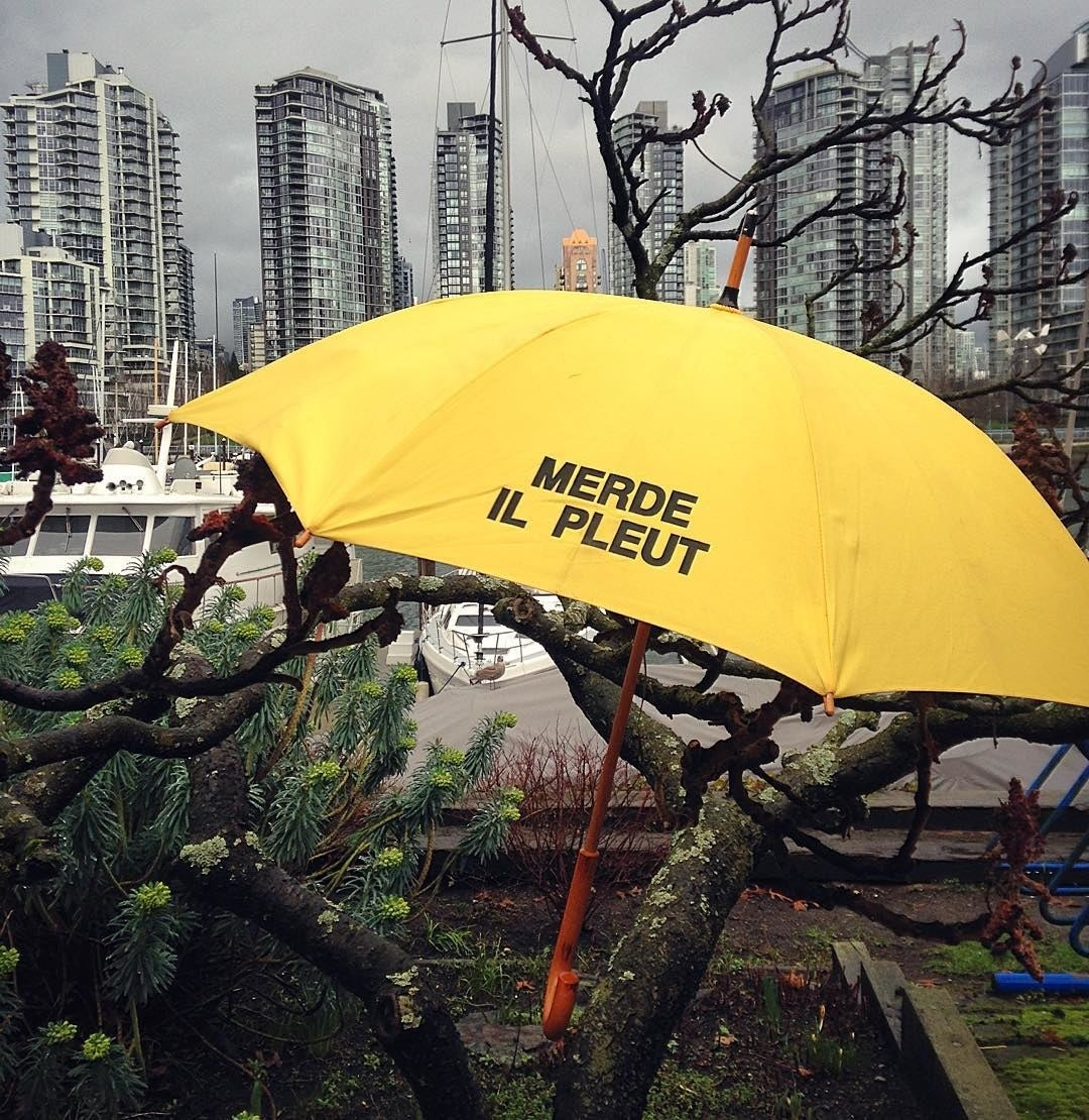 An umbrella caught in a tree with boats in the background