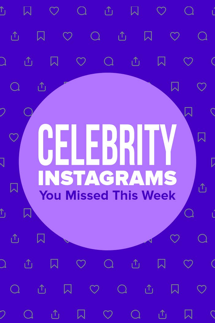 "A graphic reading, ""Celebrity Instagrams you missed this week"""