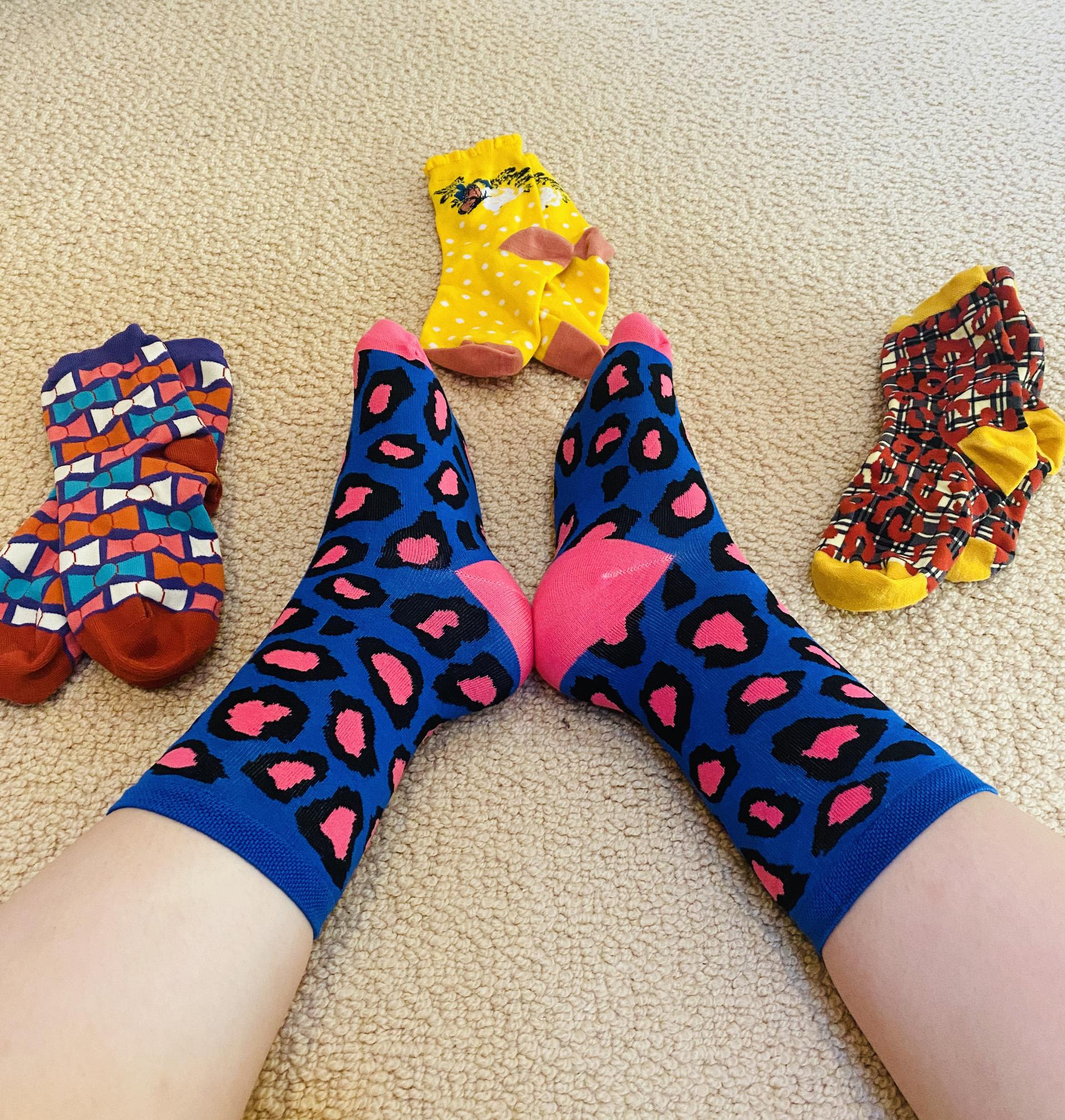katy in blue and pink leopard print crew socks surrounded by other sock candy pairs