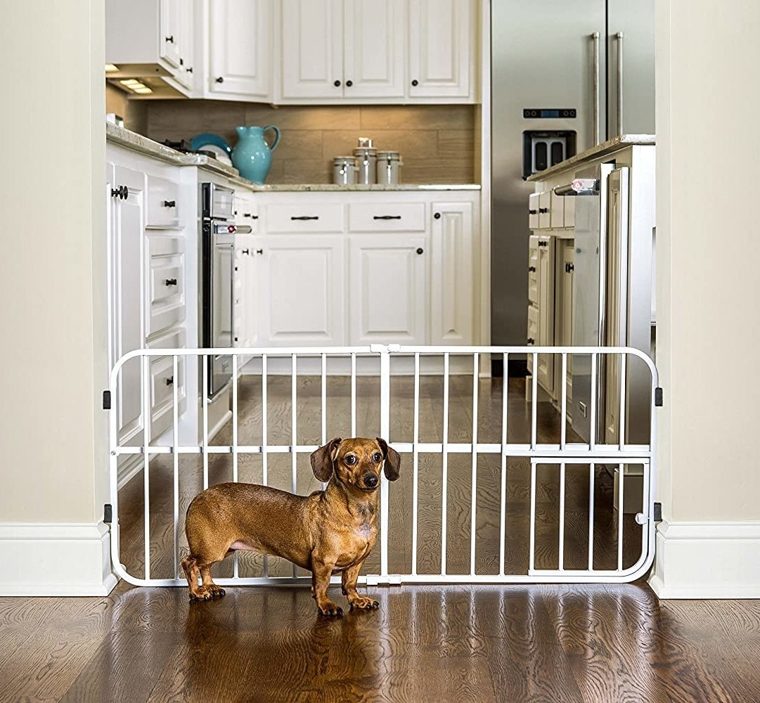 The gate in white preventing a dog from getting into the kitchen