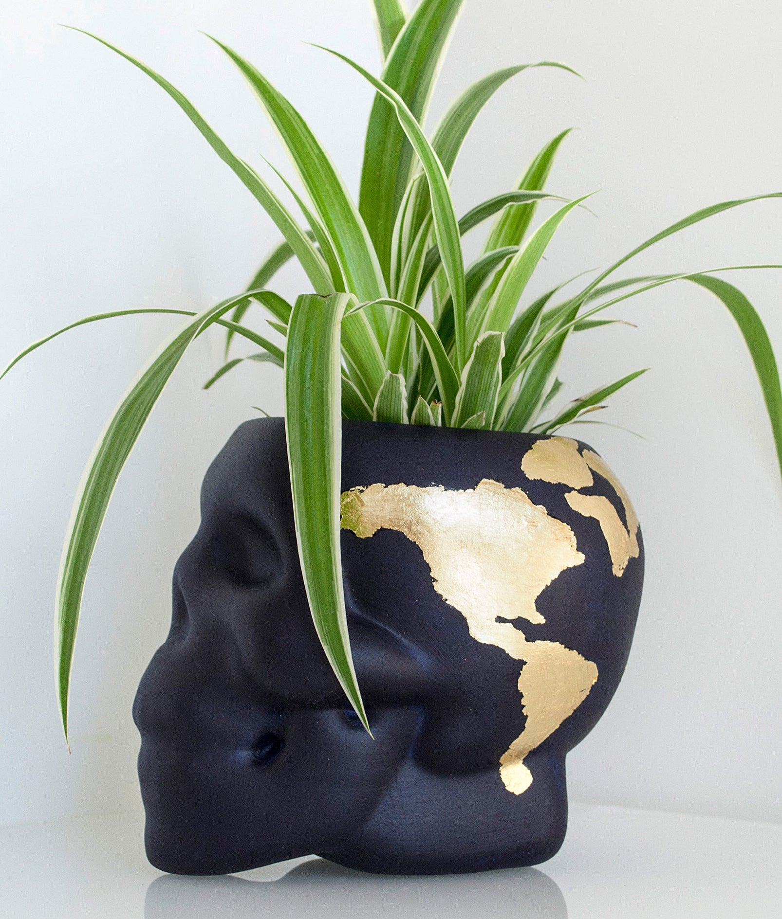AThe skull-plant pot with a plant inside