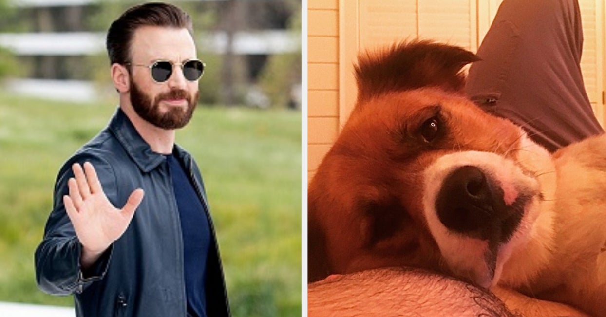 Chris Evans Shared A Pic Of Himself And His Dog, And It's Equal Parts Adorable And Thirst-Inducing