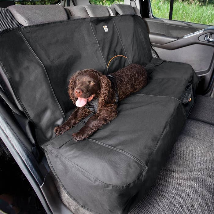 brown dog sitting on a car seat with a car cover on it