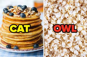 """A stack of pancakes is labeled, """"CAT"""" with popcorn labeled, """"OWL"""""""