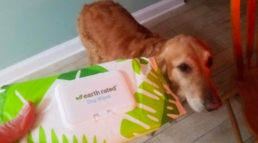 person holding up a packet of earth rated dog wipes