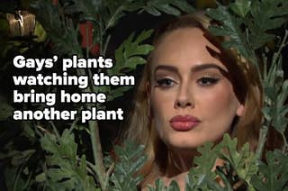 Pic of Adele in a bush, captioned,
