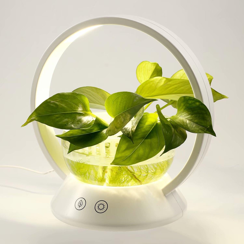 The lit up planter