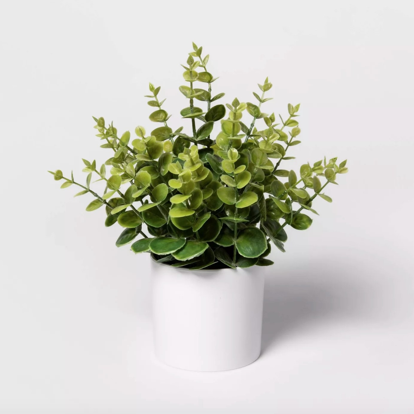 The artificial eucalyptus plant in a white pot