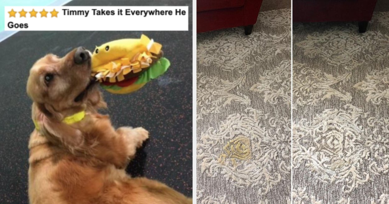 21 Things From Amazon That'll Make Taking Care Of Senior Pets Easier