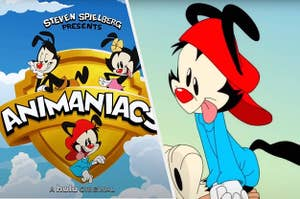 The Animaniacs in the Warner Brothers logo side by side with Wacko