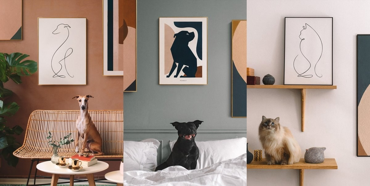 Three pics of the art: one line drawing of a dog, one color-block of a dog, and a line drawing of a cat, all with the actual animals they look like below them