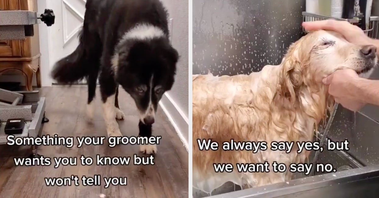 """This Groomer's """"Things We Don't Tell You"""" Video Is Something All Dog Owners Need To Know"""