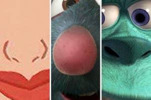 木兰的鼻子,雷米的鼻子,毛怪的鼻子特写