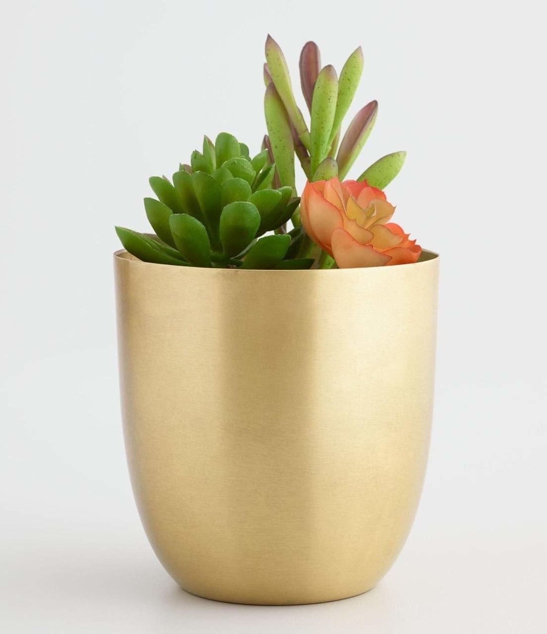 Golden metal planters