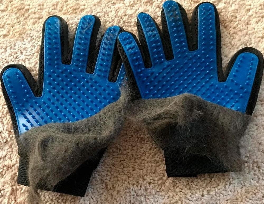 A set of grooming gloves that are covered in cat fur