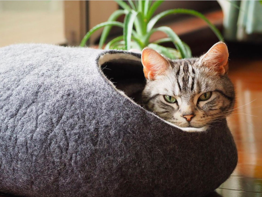 A cat peeking out from the wool cat cave