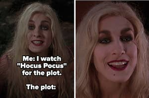 """Side by sides of sarah sanderson with the caption """"Me: I watch hocus pocus for the plot. The plot:"""""""