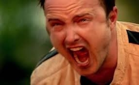 Jesse screaming on Breaking Bad
