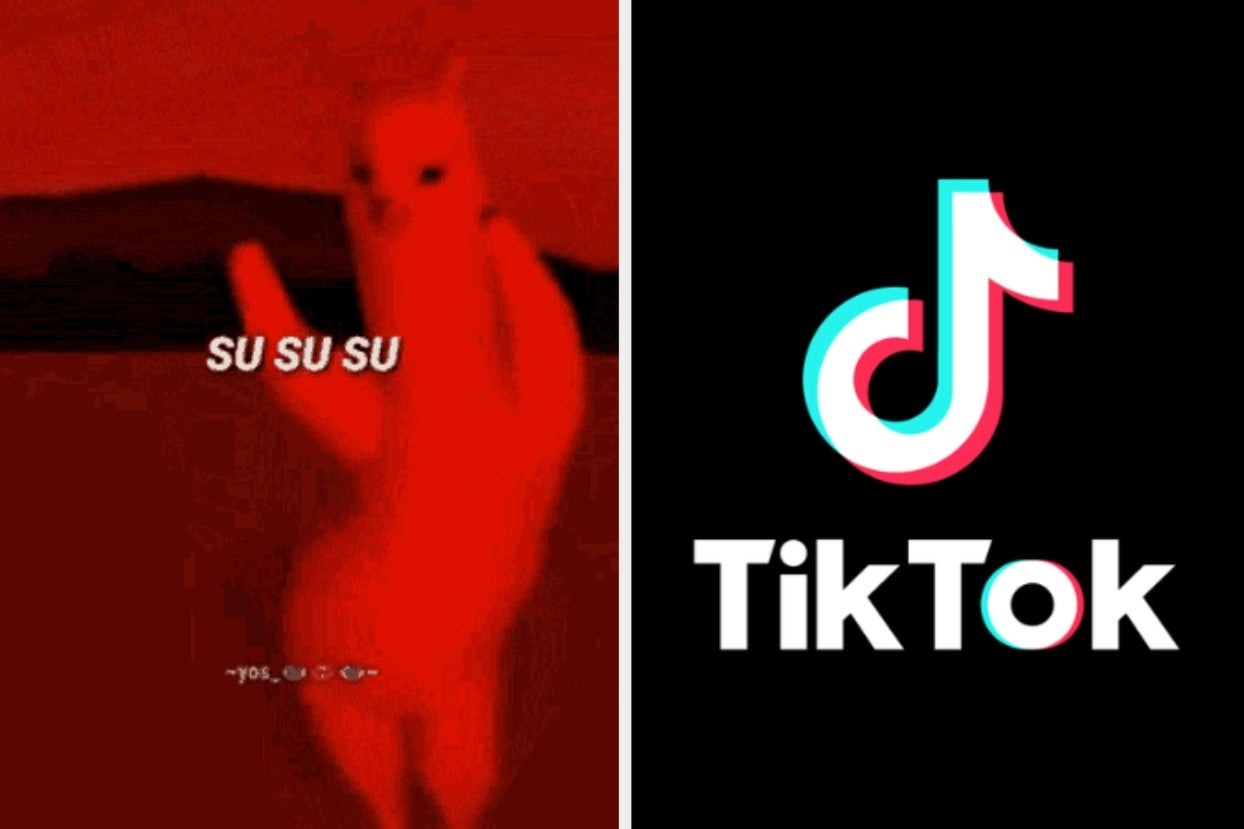 """A dancing alpaca from the """"Mi Pan Su Su Sum"""" YouTube video"""