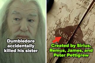 Dumbledore from