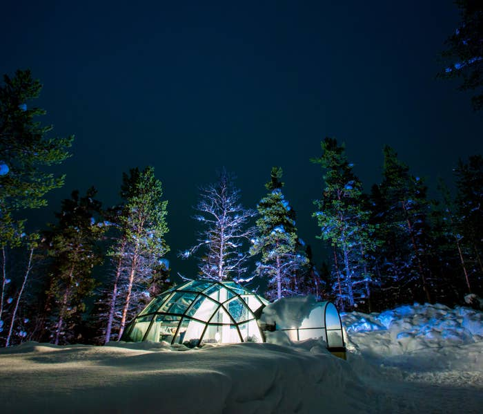 a glass igloo in the snow surrounded by trees and magical lights