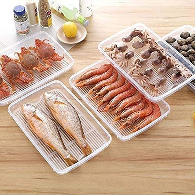 Fish, prawn and squid stored in the containers.