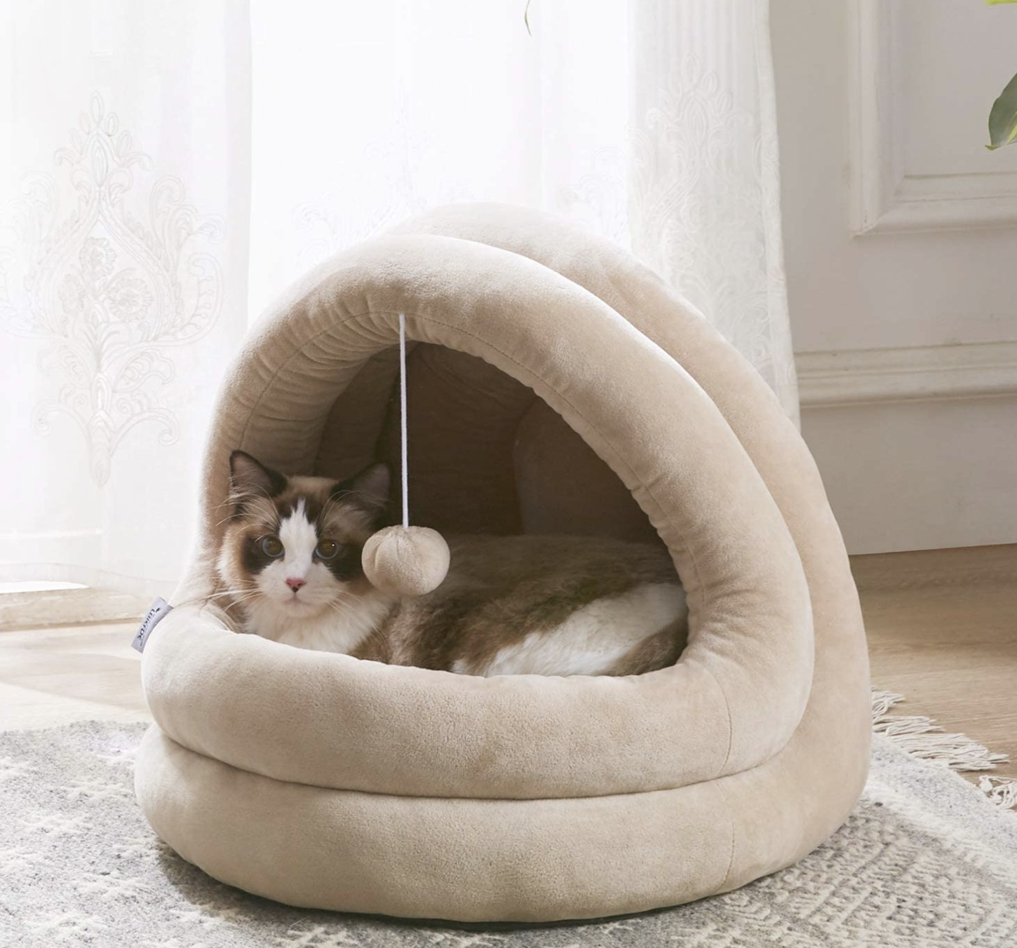 a brown and white cat sitting inside a tan cave bed with a single pom-pom hanging at its opening