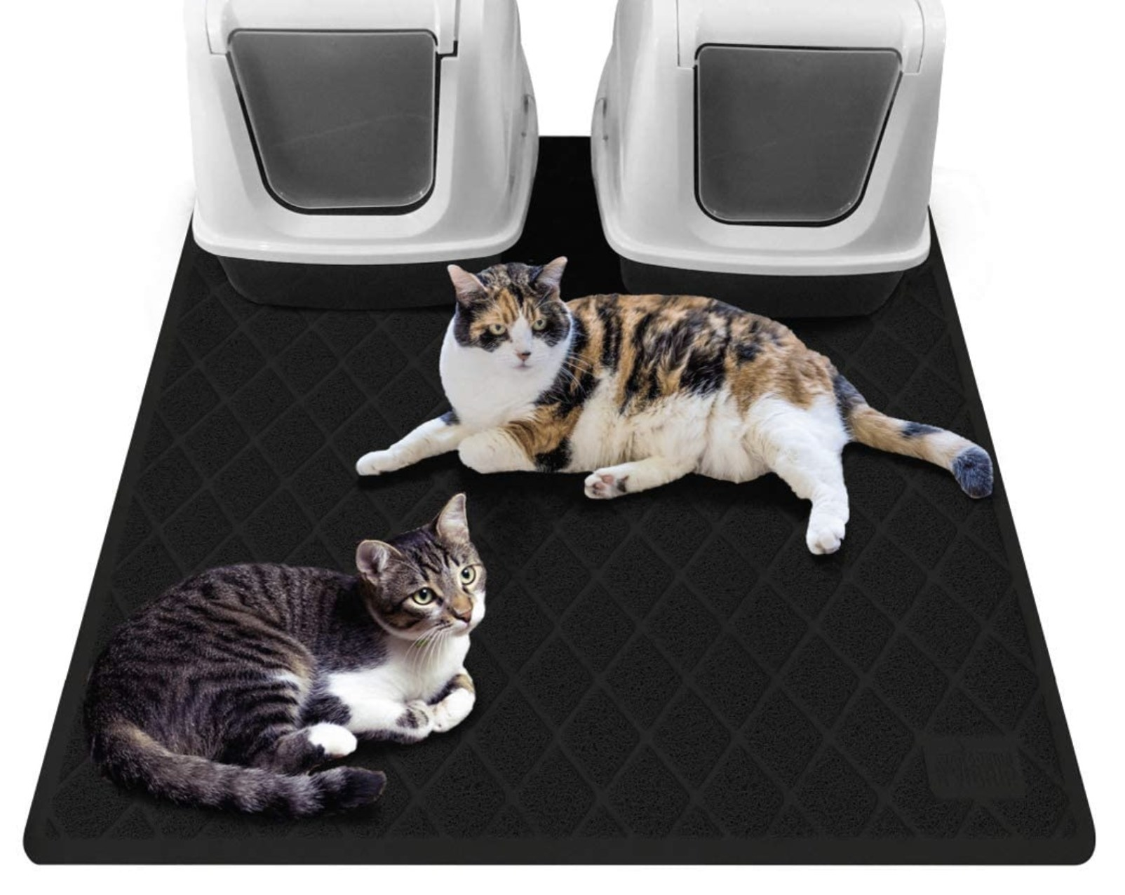 two cats sitting on a black litter trap mat