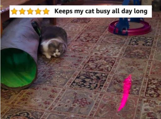 """Cat playing with the laser toy with five-star caption """"Keeps my cat busy all day long"""""""