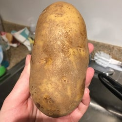 A reviewer's before photo of a dirty potato