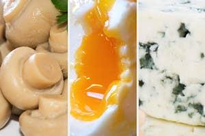 蘑菇罐头,蛋黄和蓝纹奶酪