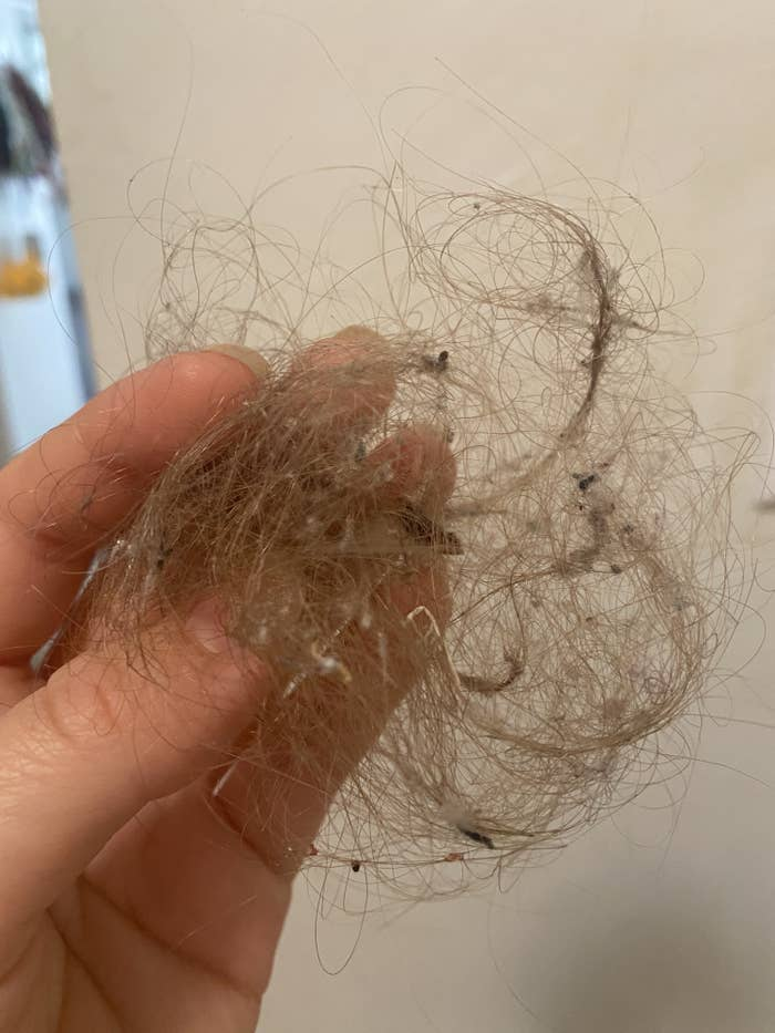 Very gross hairball with debris stuck in it