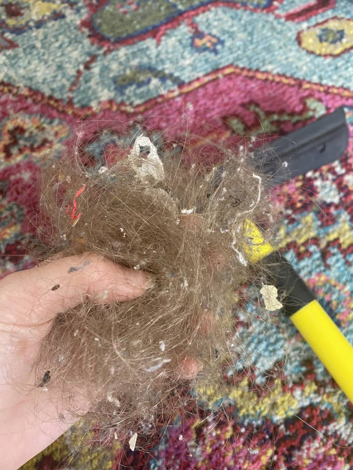 Very gross giant gob of hair with debris in it