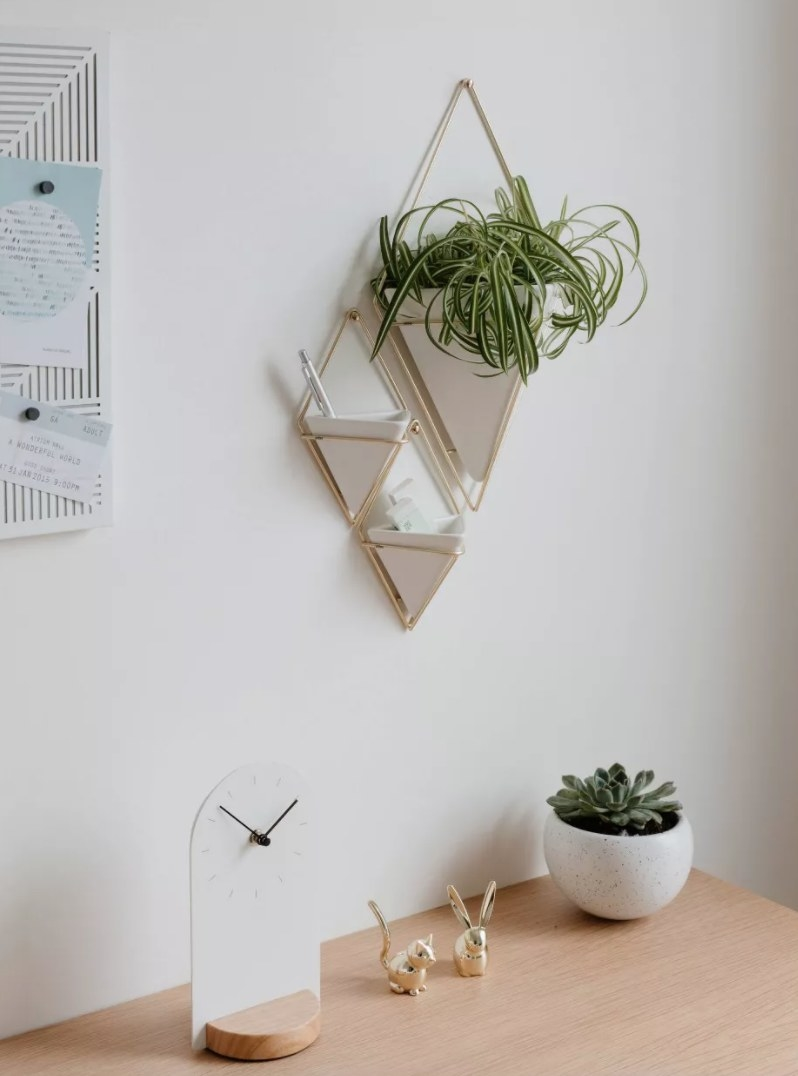 White cone-shaped planters with metallic frame hanging on a wall