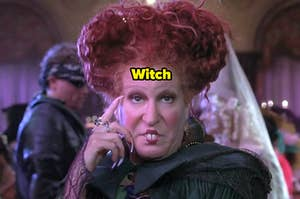 Witch bette midler from hocus pocus