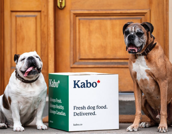 Two dogs sitting next to a food delivery box from Kabo