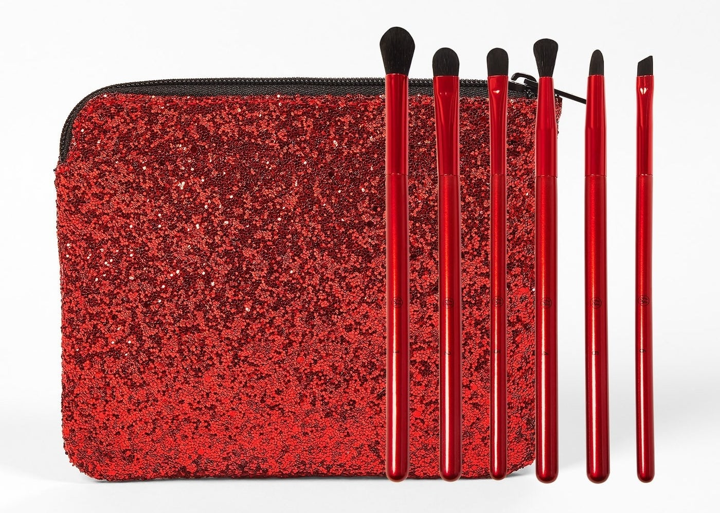 The brushes and case