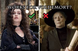 "(left) Bellatrix Lestrange poses defiantly with a green checkmark overlaid; (right) Minerva McGonagall in witch's hat with a red x overlaid; above both reads ""works for voldemort?"""