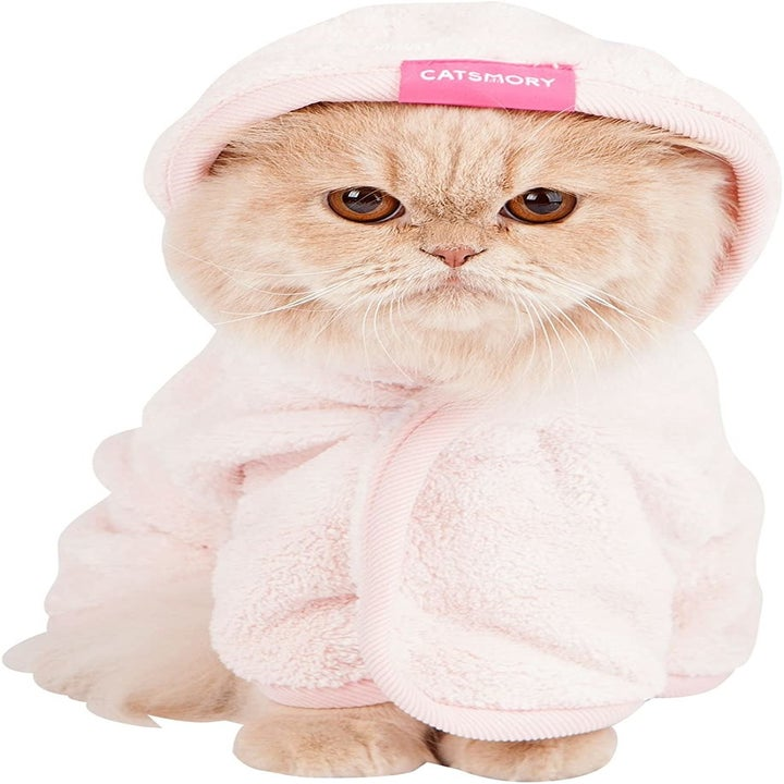 a beige cat wearing a pink microfiber robe