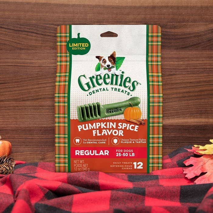 Greenies pumpkin spice flavor dental treats