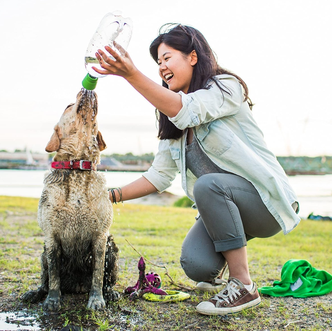 A reviewer bathing their muddy dog with the clear outdoor shower grooming tool
