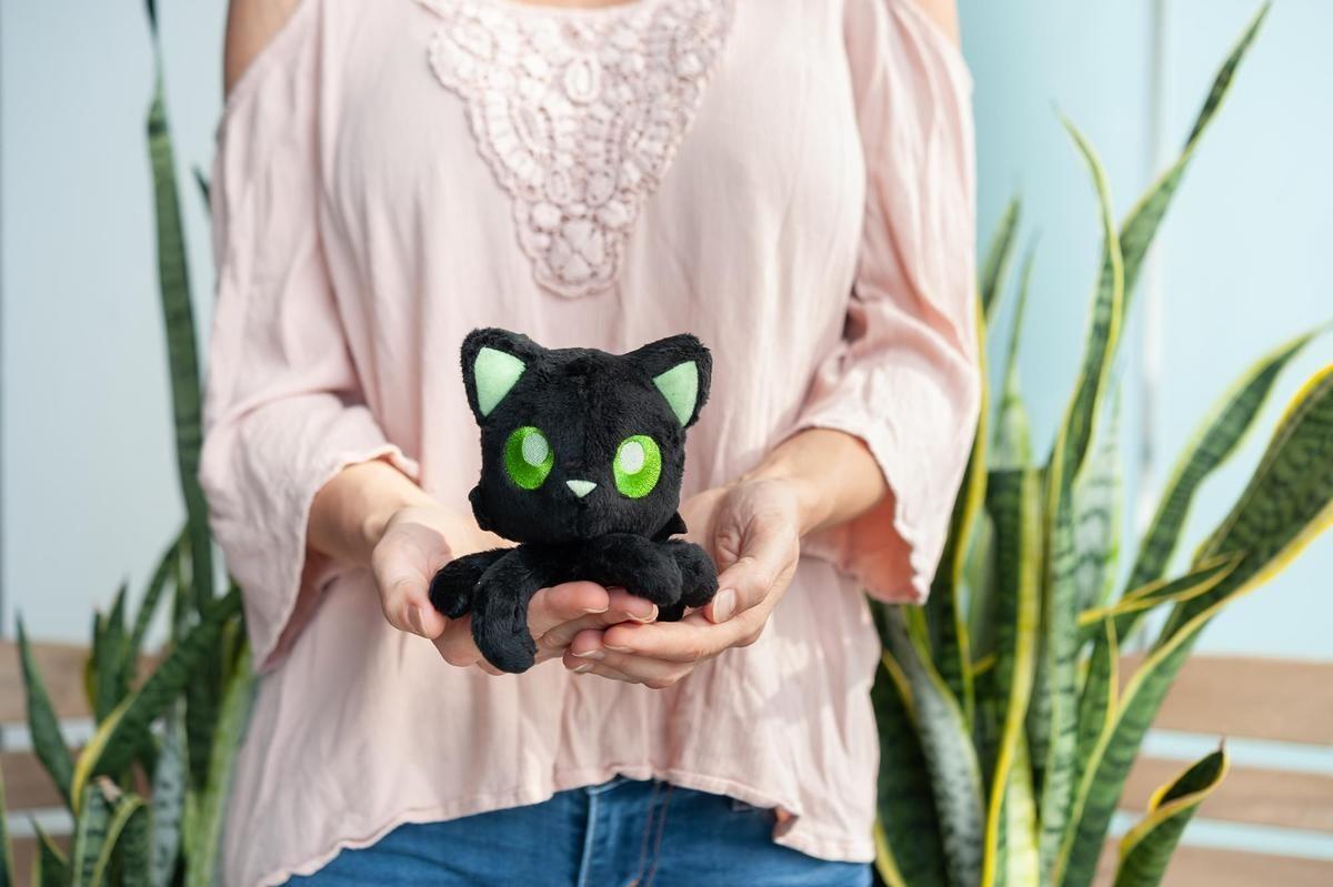 the plush kitty