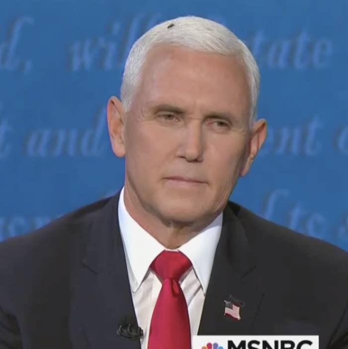 A giant fly on Pence's head