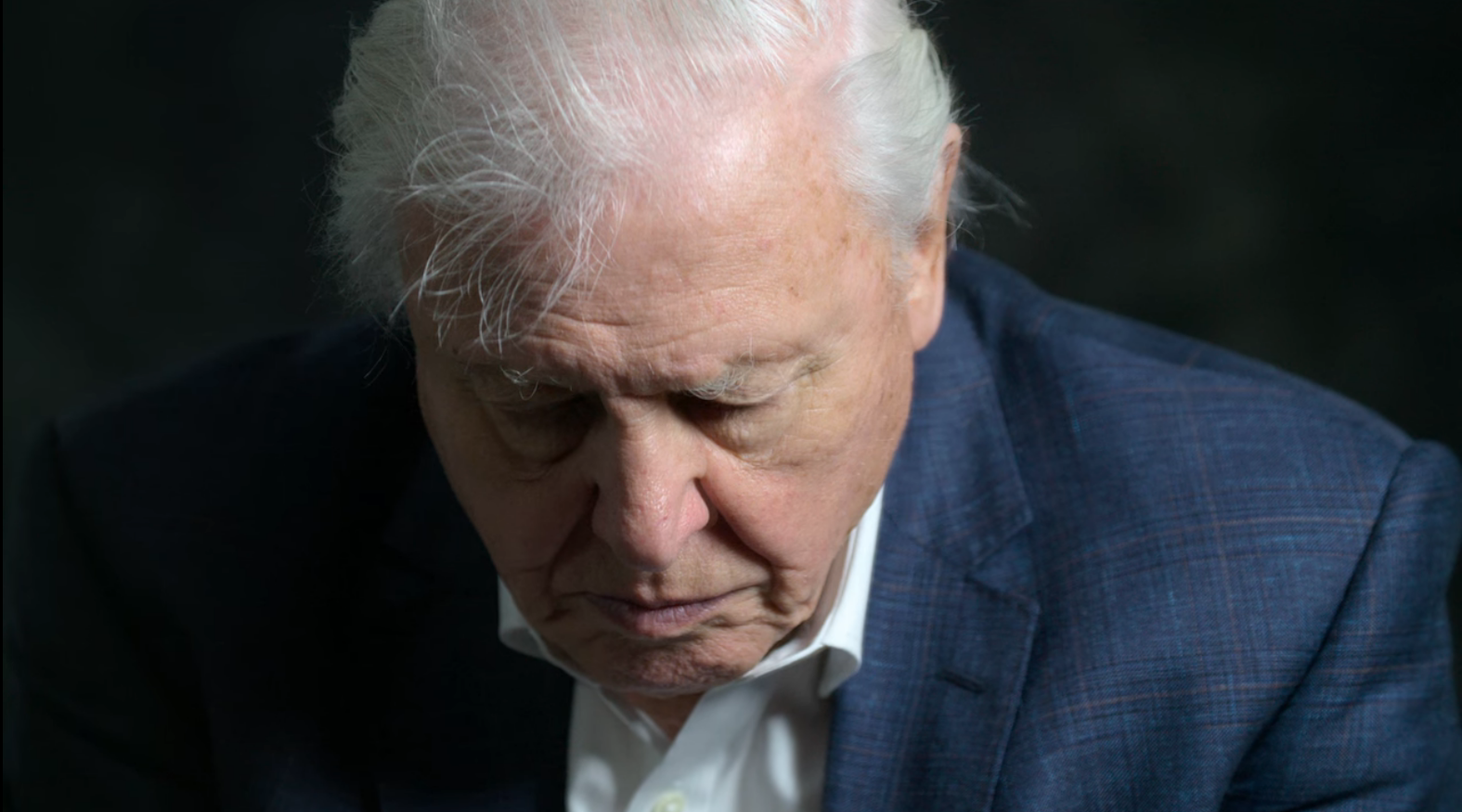 Close up of David Attenborough in the studio looking down to the floor, saddened.