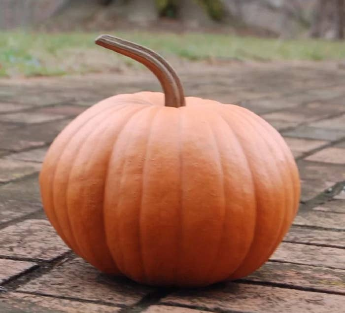 The long stem pumpkin with a resin handle