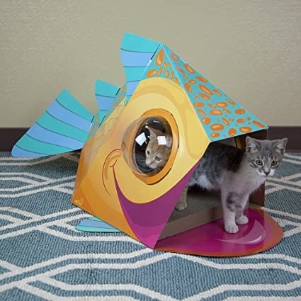 Two kittens playing inside fish-shaped scratch-able cardboard box with bubble windows