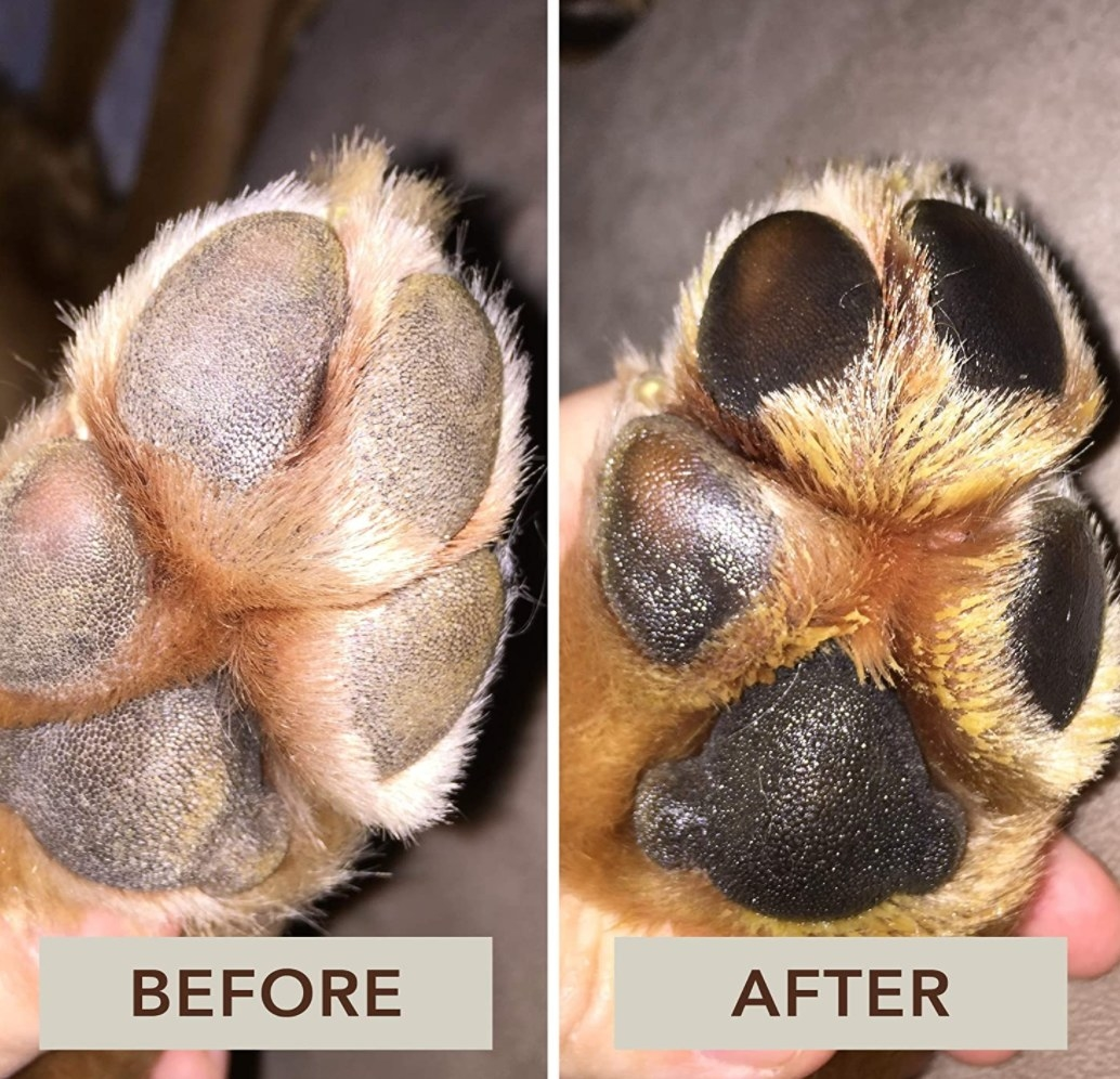 A before and after of using the paw soother
