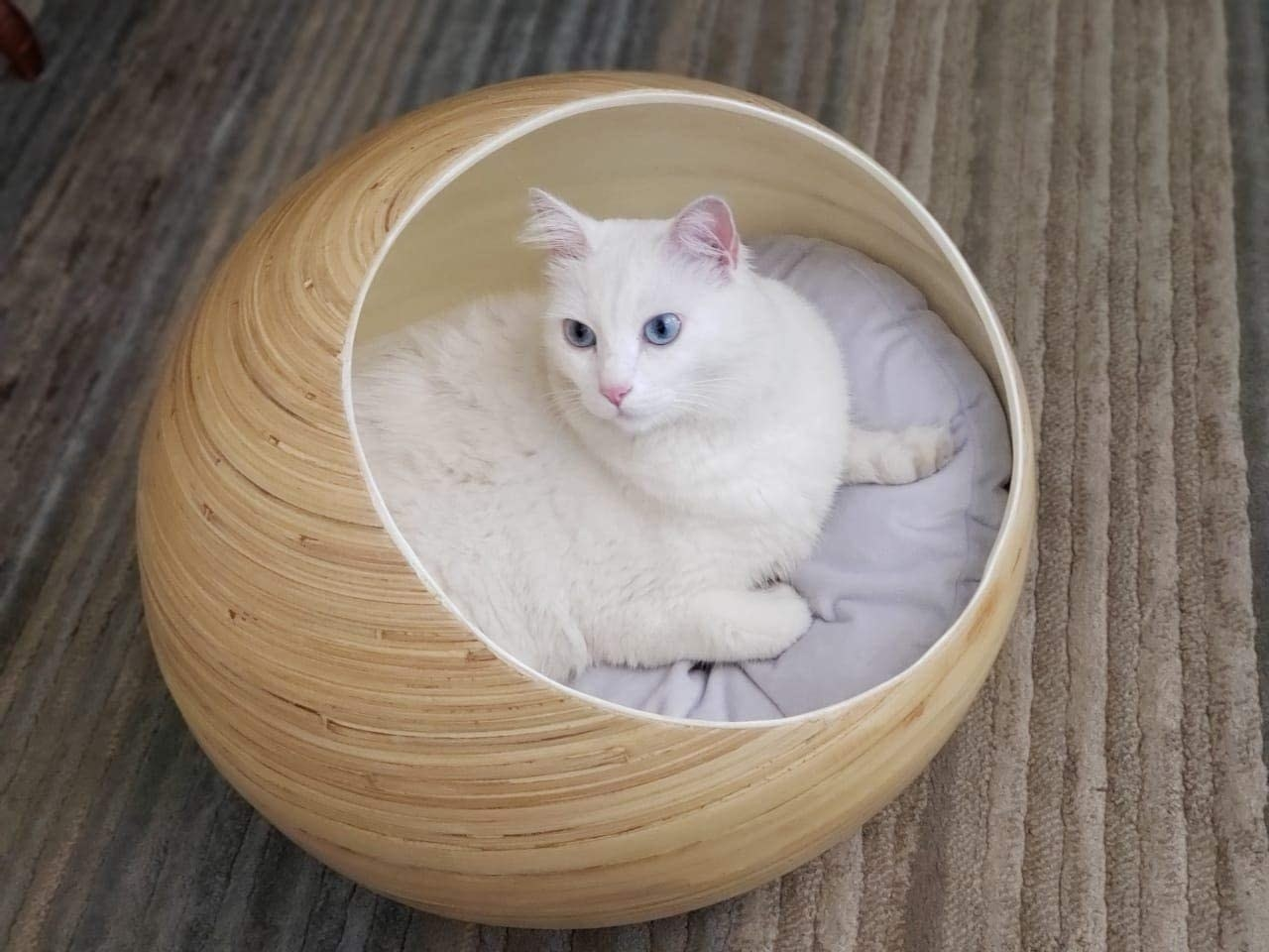 Cat inside ball-shaped bamboo bed with cushion