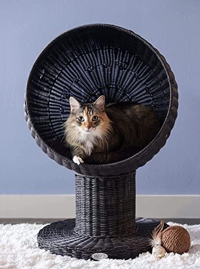 Cat inside rounded pedestal cat bed